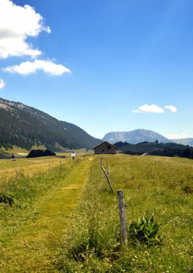Plateau des Glières - Eté (2)