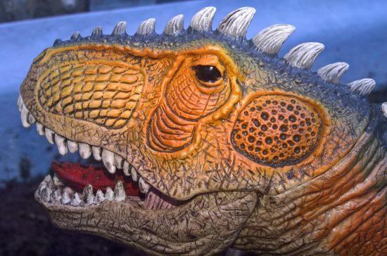 Au temps des dinosaures !