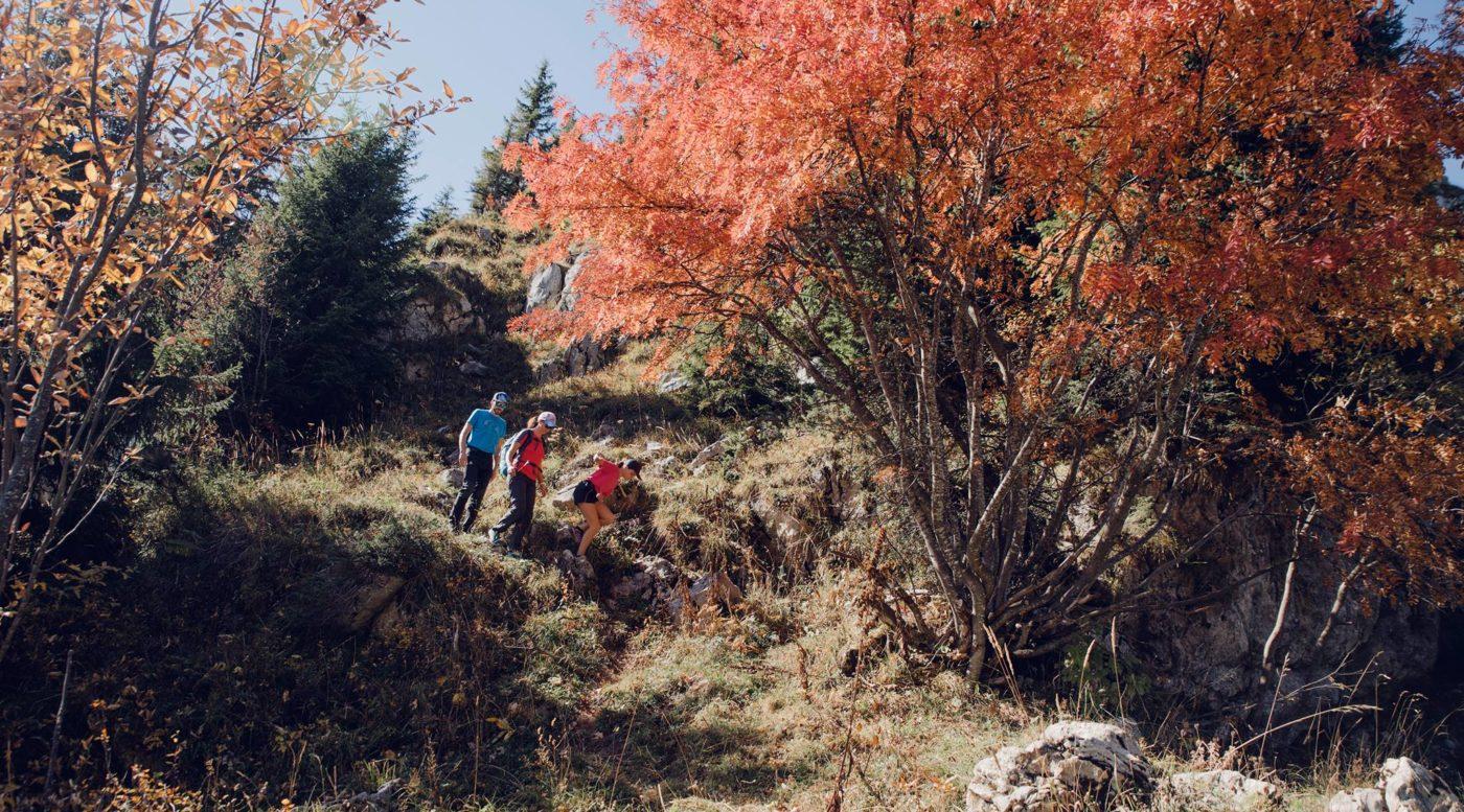 Pointe d'Andey - Plateau de Solaison - Randonnée