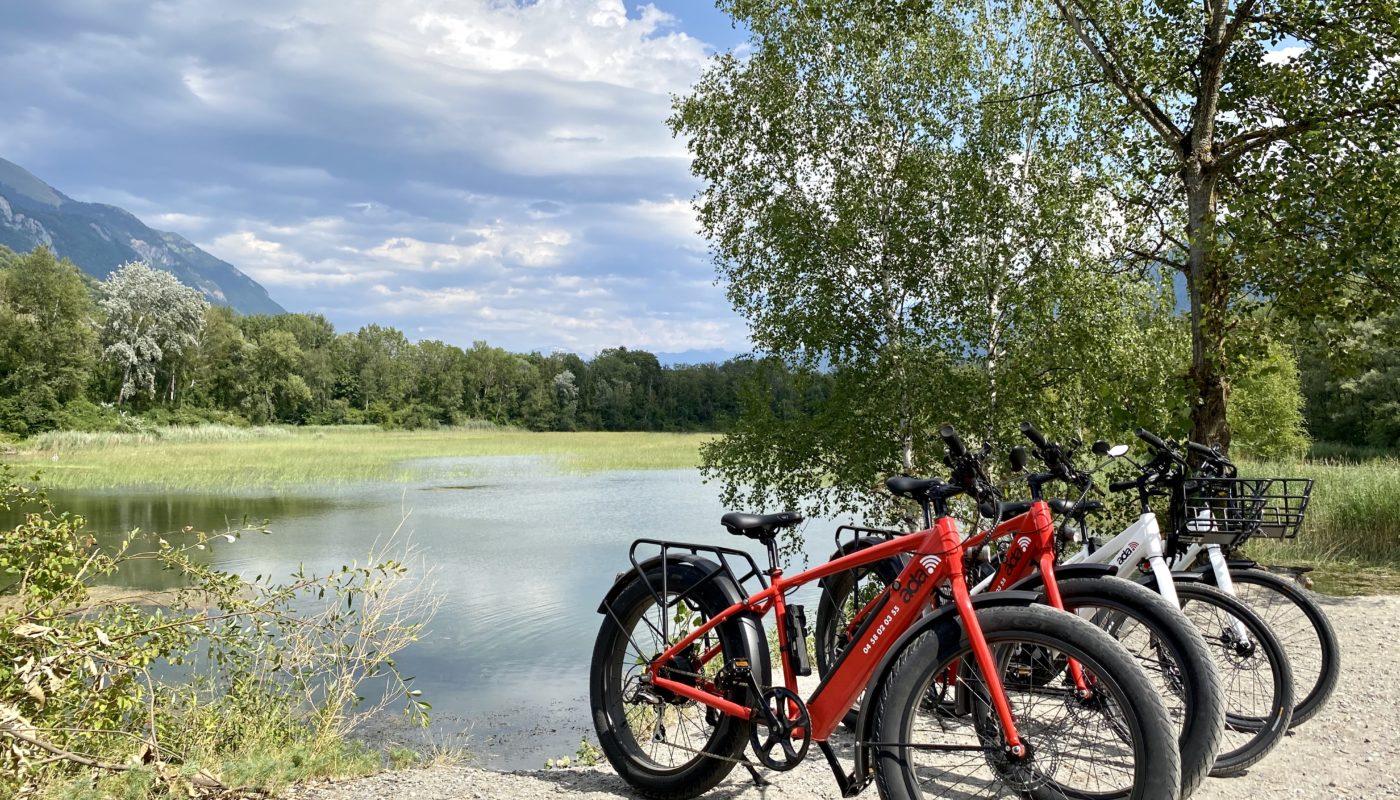 Ada bike bonneville